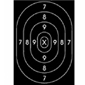 <b>Speedwell</b><br/>Repair Center for B27 Polic Silhouette Target